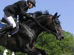 horsebackrider